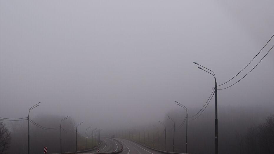 В новогоднюю ночь в Воронеже ожидается туман, гололед и моросящий дождь