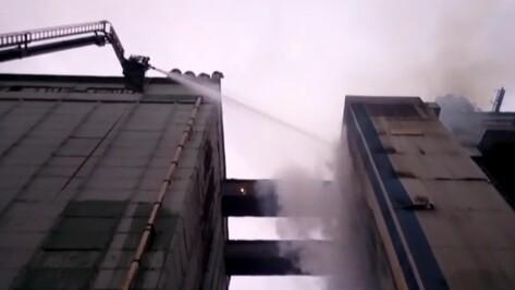 Под Воронежем к ликвидации ЧП на элеваторе привлекли пожарный поезд