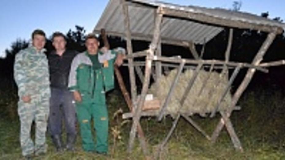 Кантемировские охотники оборудовали в лесу подкормочные площадки для диких животных