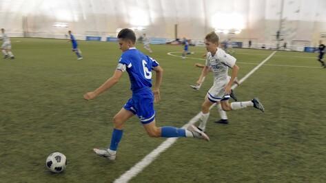 Бюджет Воронежской области поддержит футбольную академию имени Яшина на 6 млн рублей