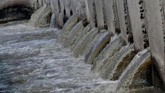 Специалисты назвали причину новой волны неприятного запаха на левом берегу Воронежа