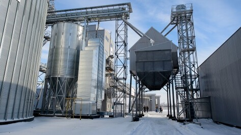 Воронежская область предложит свой план импортозамещения в феврале