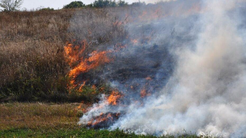 Спасатели потушили пожар в Железнодорожном районе Воронежа