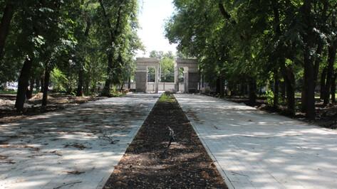 Реконструкцию парка «Орленок» в Воронеже закончат до 30 ноября