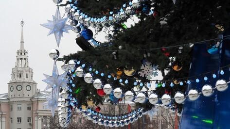 В Воронеже закончили установку новогодней елки на площади Ленина
