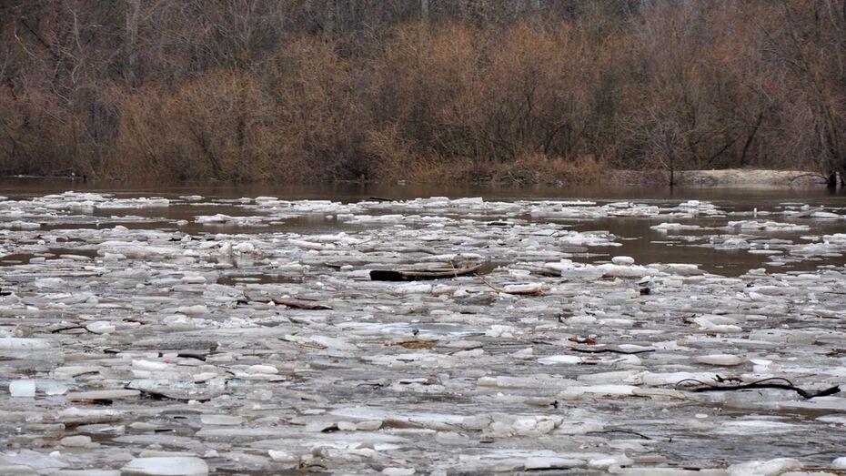 В Павловском районе прошел ледоход