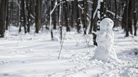 Гид РИА «Воронеж»: куда пойти на выходных 16 и 17 января