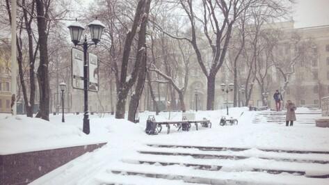 В выходные в Воронеже будет прохладно и снежно