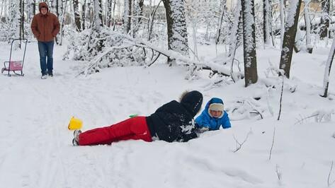 Мороз в Воронеже окрепнет до -19 градусов