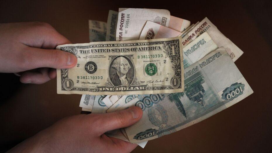 Центробанк прогнозирует стабилизацию курса рубля к весне 2015 года