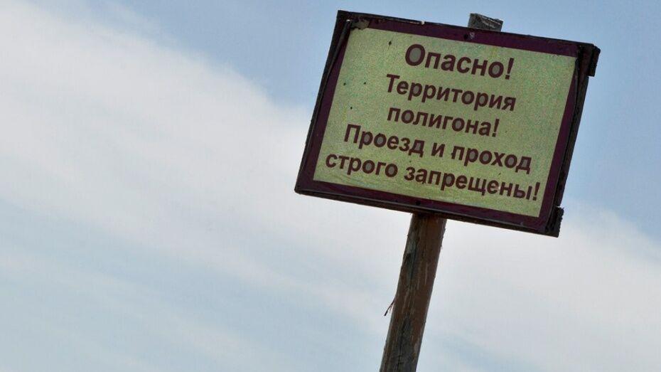 Воронежцы нашли на прогулке в лесу 2 артиллерийских снаряда