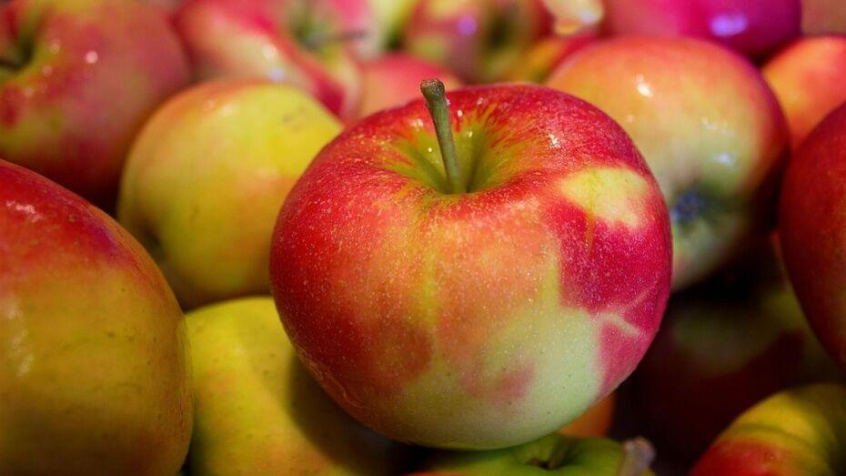 Россельхознадзор нашел на воронежском рынке опасные белорусские яблоки
