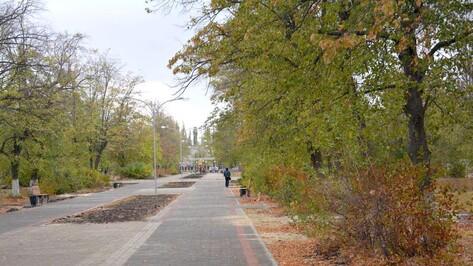В Поворинском парке Победы провели инвентаризацию насаждений
