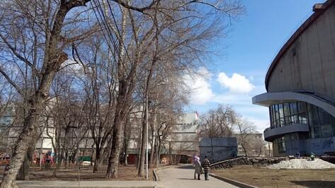 В Воронеже появится Аллея цирковых династий
