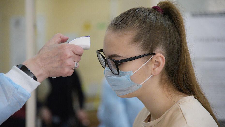 Воронежские торговые объекты обязали проводить термометрию всех посетителей