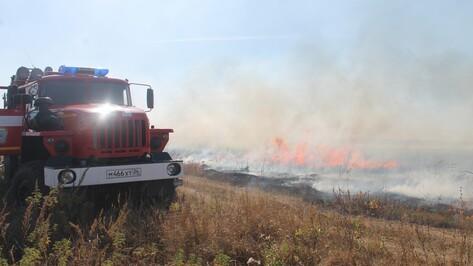 Под Борисоглебском пожарные несколько часов тушили ландшафтный пожар