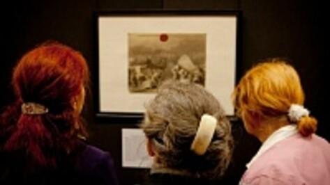 Все воронежские музеи в июне можно будет посетить бесплатно