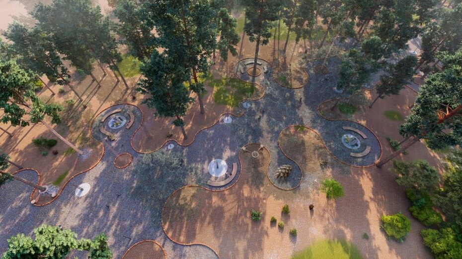 Жители Воронежа не вдохновились концепциями развития Северного леса
