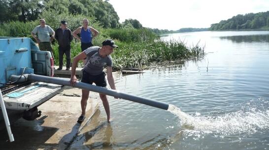 В Лискинском районе в Дон запустили более 1,1 млн мальков стерляди и сазана