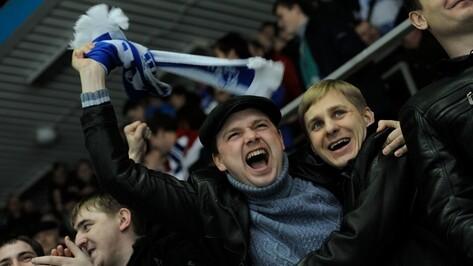 Вход на предсезонный хоккейный турнир в Воронеже будет бесплатным