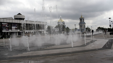 Начало июля в Воронежской области будет холоднее нормы