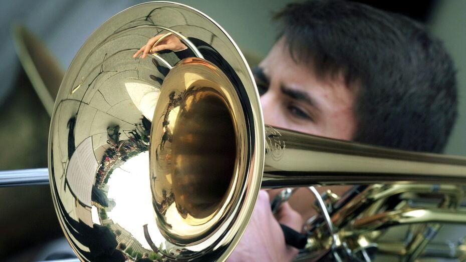 Воронежский симфонический оркестр даст серию бесплатных концертов в городских парках