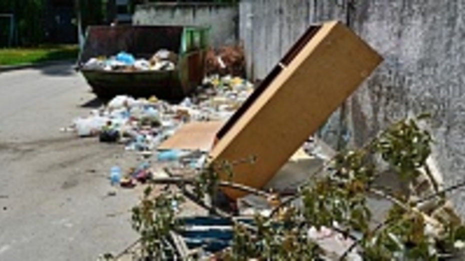 Под Борисоглебском нашли несанкционированную свалку площадью три тысячи квадратных метров