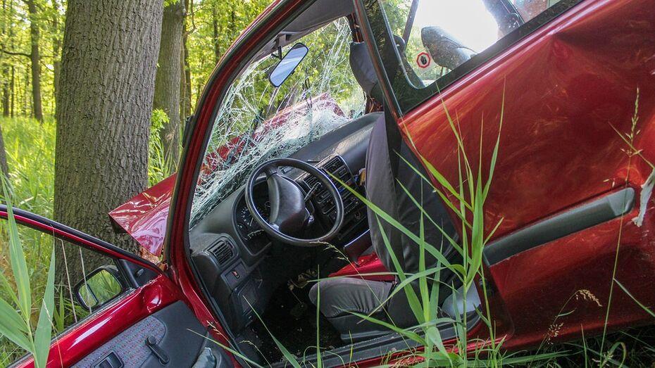 В Воронежской области Renault Logan врезался в дерево: водитель погиб