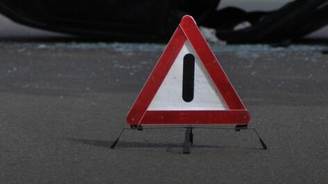 В массовом ДТП на трассе М4 в Воронежской области погиб пассажир микроавтобуса