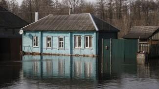 В Воронежской области за сутки от воды освободились 111 приусадебных участков