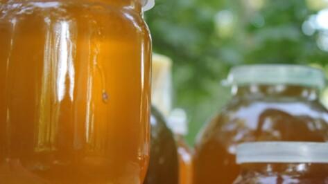 Немецкие министры заинтересовались воронежскими глазированными сырками и медом