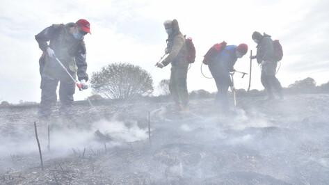 Заливать дымящуюся траву под Воронежем помогают добровольцы