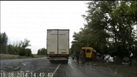 Полиция: в ДТП с маршруткой под Воронежем пострадали три человека (ВИДЕО)