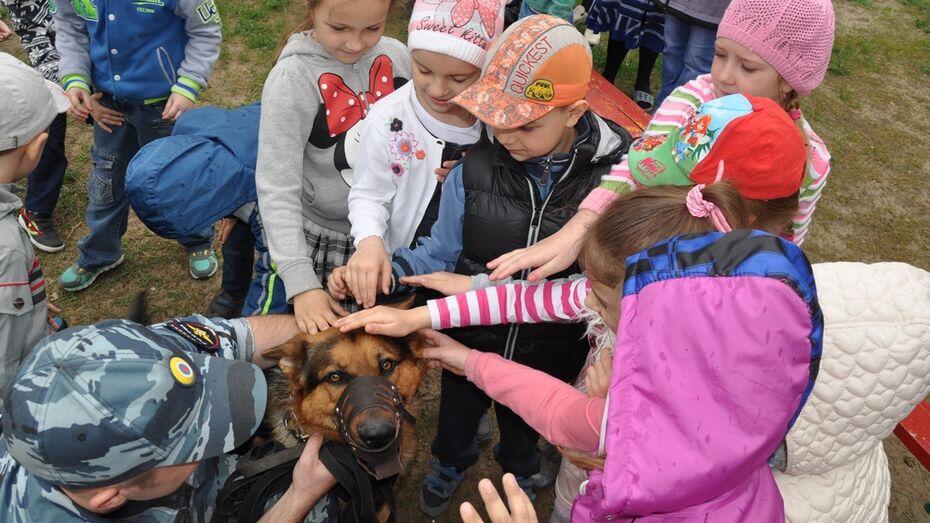 В Павловске впервые прошла акция «Собаки-герои»