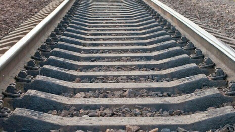 Под Воронежем грузовой поезд сбил 23-летнего парня