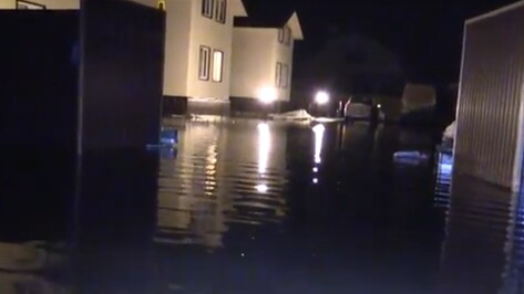 Спасатели опубликовали видео последствий паводка под Воронежем