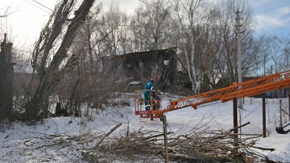 МЧС предупредило воронежцев об усилении ветра 12 февраля