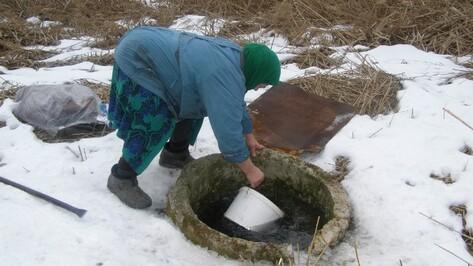Жители села Михнево Нижнедевицкого района вынуждены пить воду из ручья