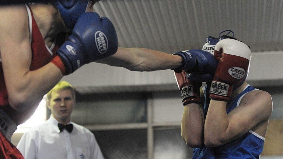 Открытие воронежской любительской боксерской лиги отложили из-за карантина по гриппу
