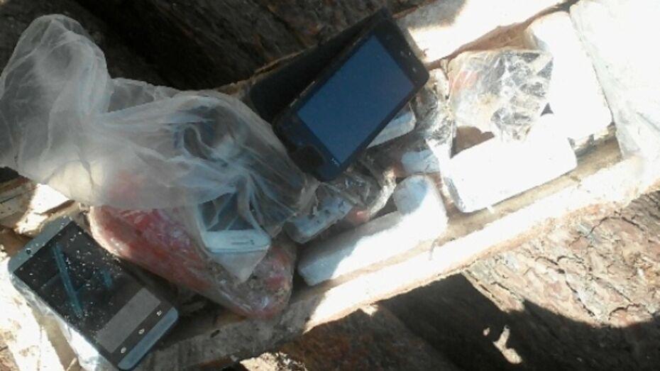 В колонию под Воронежем передали телефоны и наркотики в бревне