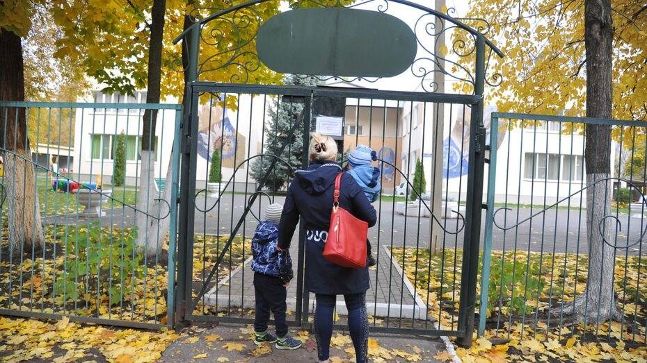 На создание ясельных групп в Воронежской области выделят 1,4 млрд рублей