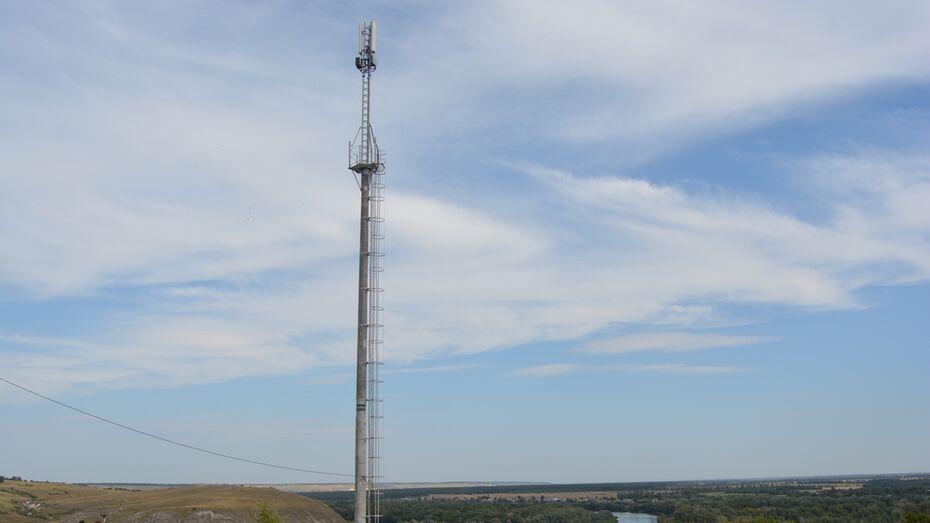 В россошанском селе Нижний Карабут установили вышку сотовой связи