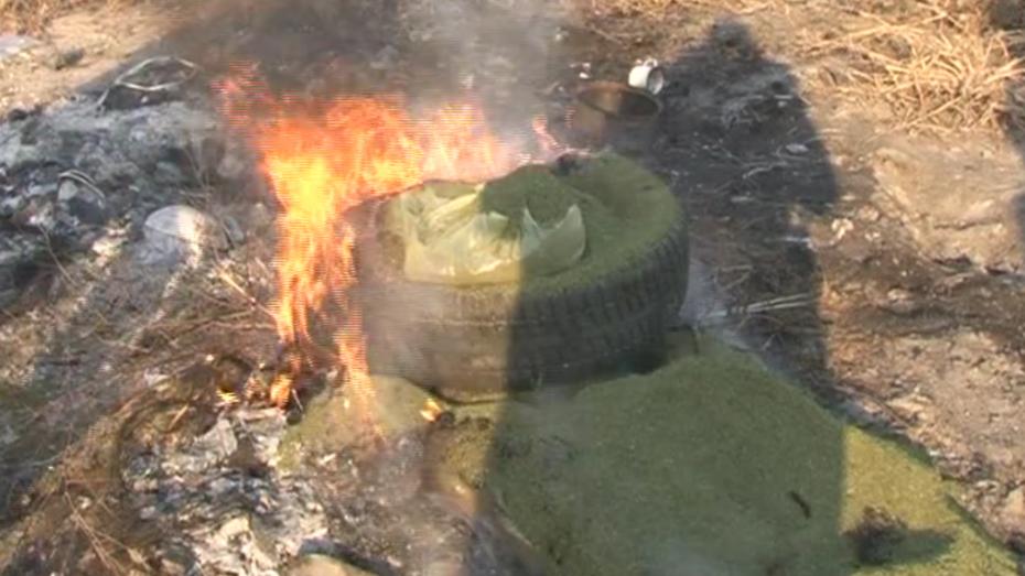 Воронежские наркополицейские сожгли более 25 кг наркотиков