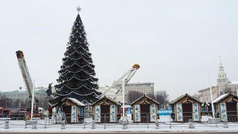 Установку главной новогодней елки в Воронеже сняли на видео