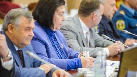 Воронежскому губернатору представили стратегию защиты прав человека на 2018 год