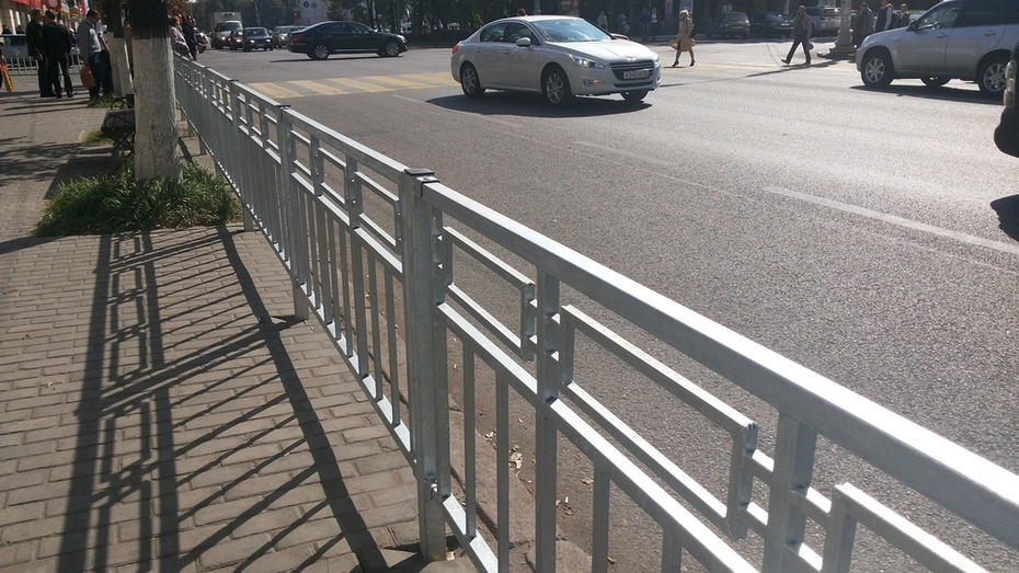 Мэрия Воронежа запретит на два дня парковаться на улице Маршака