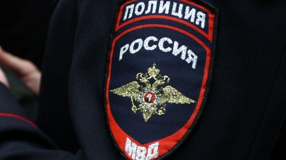 Поворинские полицейские установили виновника смертельного ДТП с пешеходом