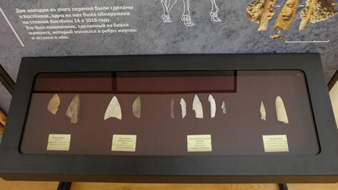 Выставку воронежского музея «Костенки» представят в Тамбове