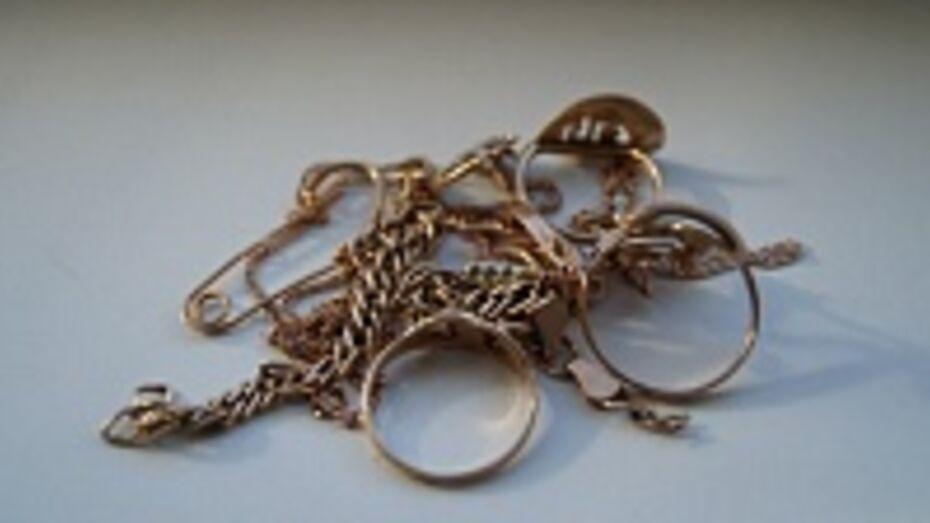 У жительницы Рамонского района украли серебряную подкову и обручальное кольцо