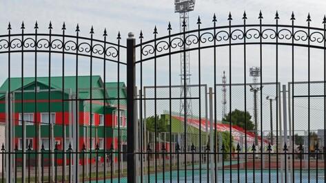 Реконструкция стадиона «Локомотив» в Воронежской области завершится к 15 июля 2018 года